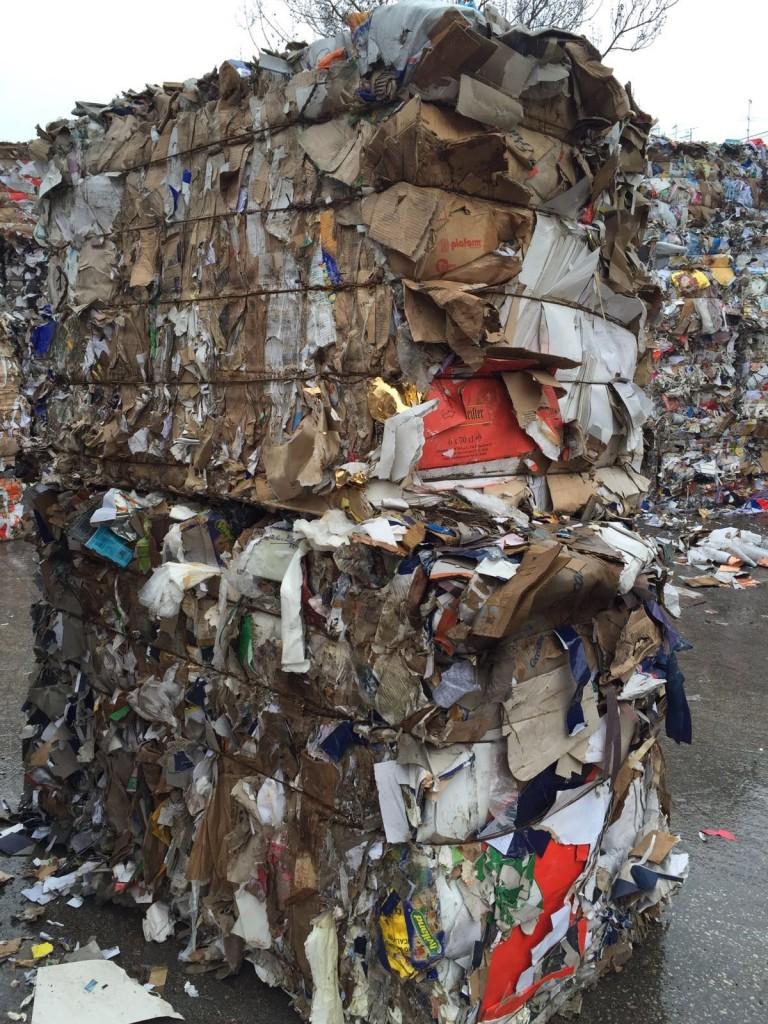 Analisi qualità carta 2 768x1024 - Analisi sulla qualità della carta da riciclare